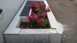 bac_a_fleurs